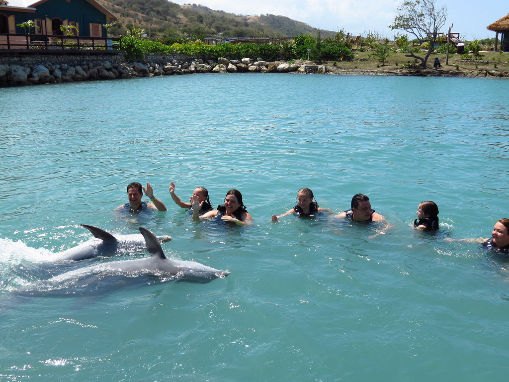 dolphins-cove-jamaica-1